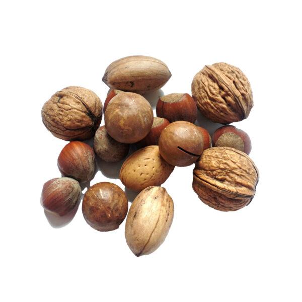 Fruits à coque